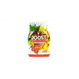 Joost™ Pineapple